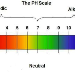 ph-scale-terreno