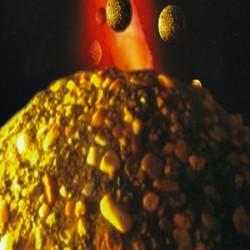 CANNAZYM CANNA Enzima Fertilizzante