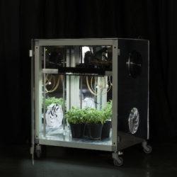 Coltivazione Indoor-Come Iniziare-Terra, Idroponica o Aeroponica