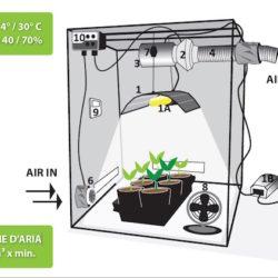 Coltivazione indoor Guida - Coltivare in un grow box