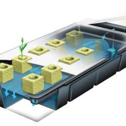 Idroponica - Guida alla coltivazione