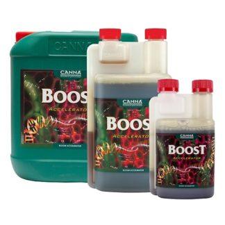Canna Boost Accelerator per fiori più grandi e consistenti