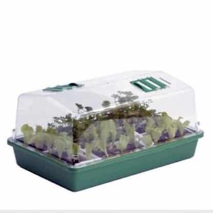Mini Serra Ventilata GROW EAZY Semenzaio plastica rigida 38X24x18cm