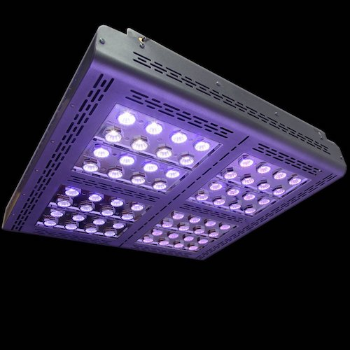 Lampade A Led Per Coltivazione Indoor.Mars Pro Ii Epistar 320 Led Mini Cob 5w 700w Lampade Led Coltivazione Indoor