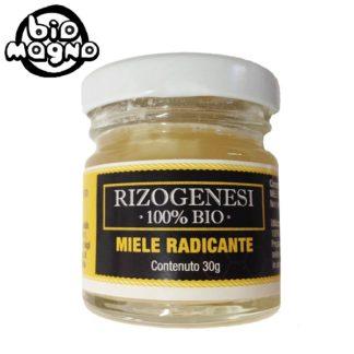 Miele Radicante BioMagno Rizogenesi 30gr 100% Bio Ormoni Radicanti per Cloni e Talee