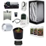 Kit Grow Room Completo Mammoth Lite 80 80x80x160 + CFL 200W AGRO Cultilite