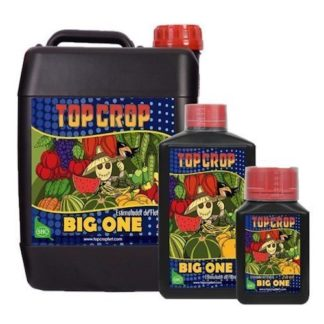 Big One Booster Top Crop Fioritura Stimolante Concentrato