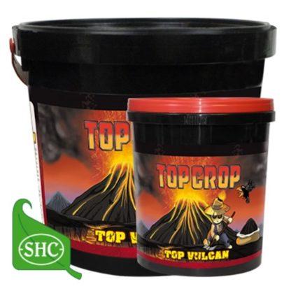 Top Vulcan Top Crop Pietra Vulcanica Ammendante per Substrati