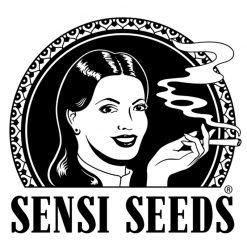 Sensi Seeds Autofiorenti